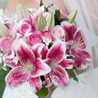 Hochzeit pink Blumenstrauß Heirat Braut Brautstrauß Trauung Strauß